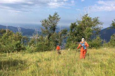 Zoekactie naar vermist meisje (12 jaar) in Serle (Italië)