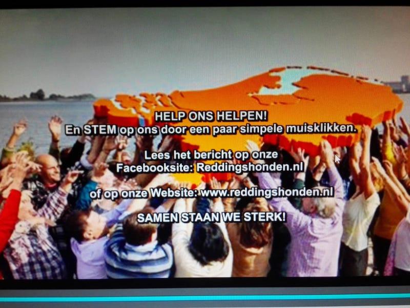 Help ons Helpen - Reddingshonden RHWW